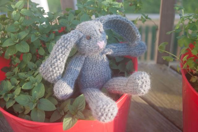 ALSAP Rabbit