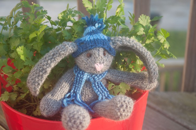 ALSAP Rabbit with scarf and hat